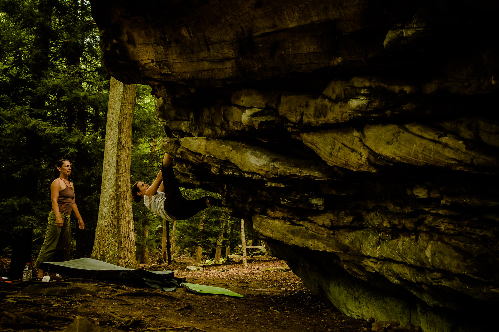 Erica working Mushrooms (V3)