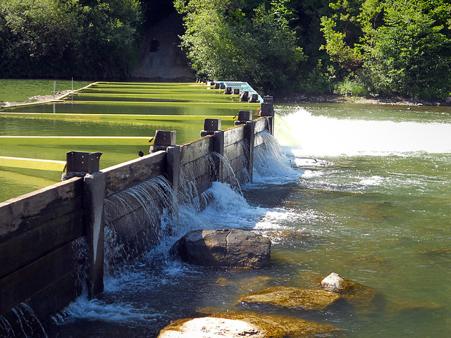 Russian River Summer Dam