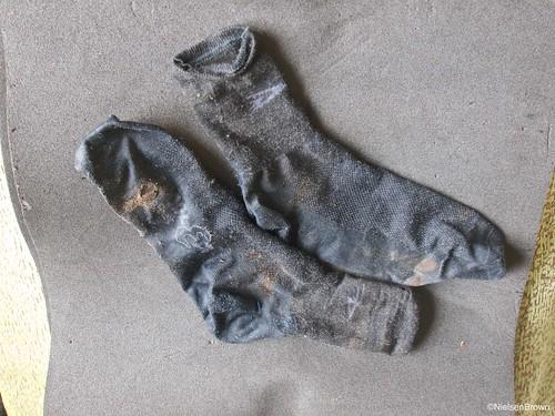 Defeet Wooleater socks