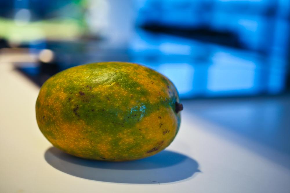 Mr Mango