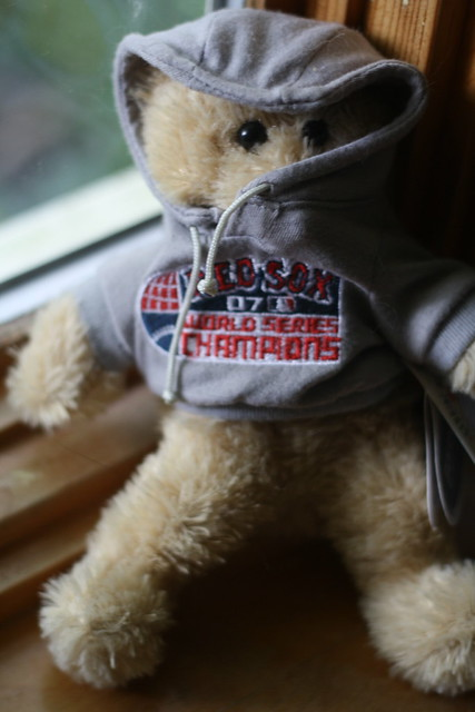 Sad Red Sox bear