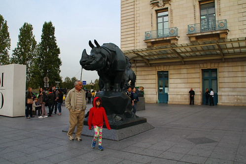 Rhino at Orsay