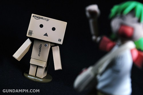 Revoltech Danboard Mini Amazon Box Version Review & Unboxing (42)