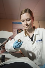ESA-RAL Advanced Manufacturing Laboratory - Polishing table