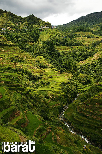 View points in Banaue, main, dayanara, nfa,