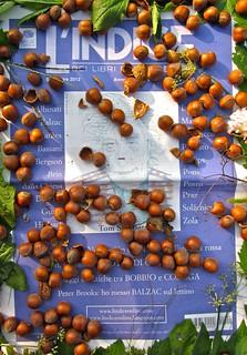 L'Indice dei Libri del mese, settembre 2012