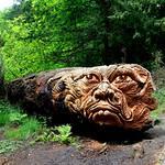 Cragside carving