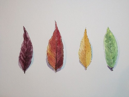 Watercolor Leaves by Rebecca Stahr