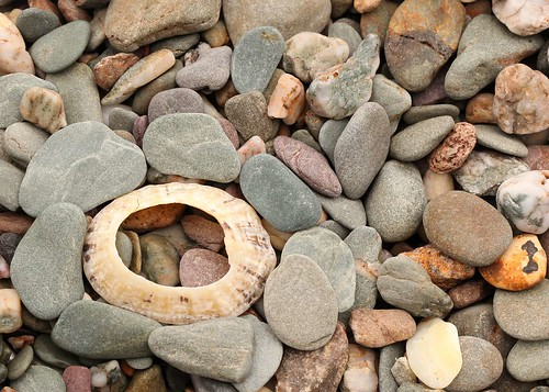 Stones And Shell by Netkonnexion, on Flickr