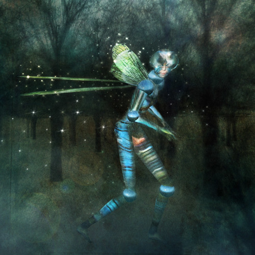 Dragonfly night wandering by CapCat Ragu
