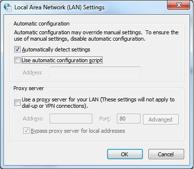 Local Aria Network (LAN) Settings, local area network setting, ie, automatically detect settings, wpad, proxy autodetect