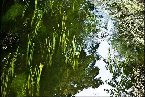 schweben im Kanal