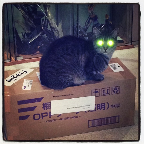 Charlie: This is my box! Stay away or I'll eliminate you with my laser eyes!