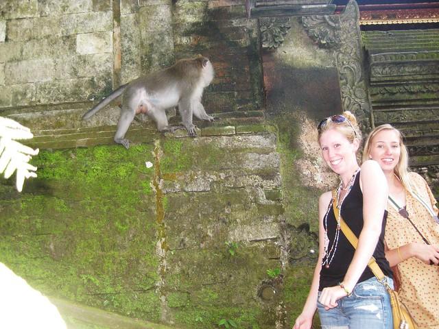me + katie + monkey = love 4 eva