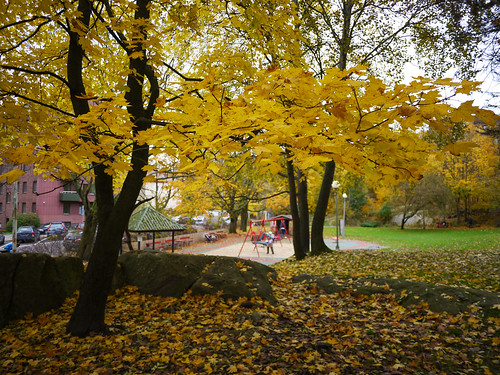 296/366 - Fall at the playing ground by Flubie