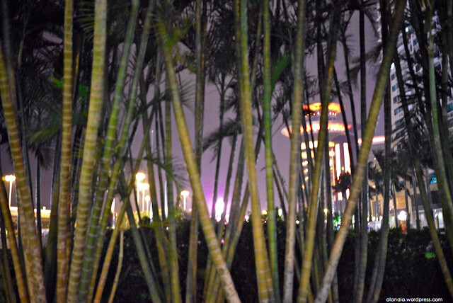 Through the trees - The plaza of the Liason Office of the Central People's Government