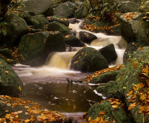 Autumn Cascade - Padley Gorge
