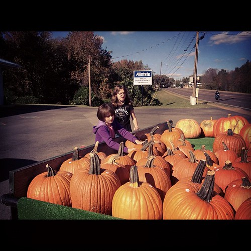 Picking pumpkins by accidentalsouthernmama