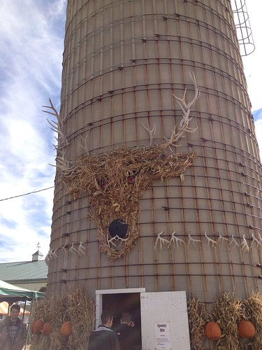 silo of antlers