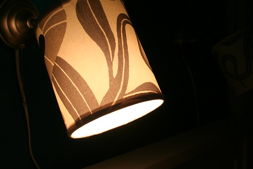 I made some lampshades
