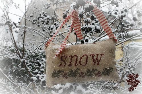 snow2-1