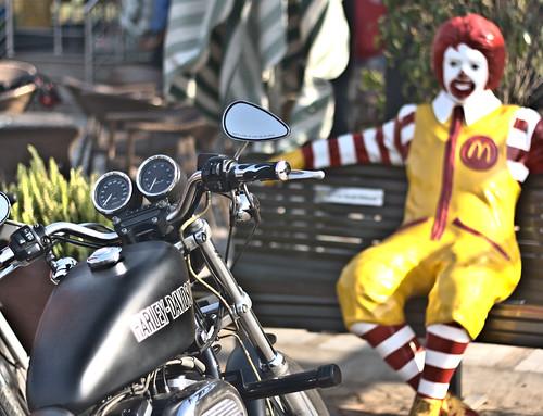 Harley McDonald