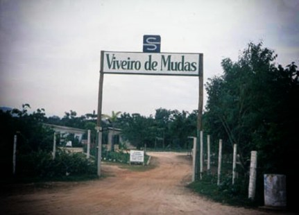 1990 - Entrada do viveiro de mudas da Riviera