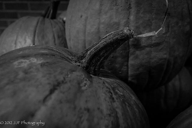 2012_Oct_12_pumpkin_002