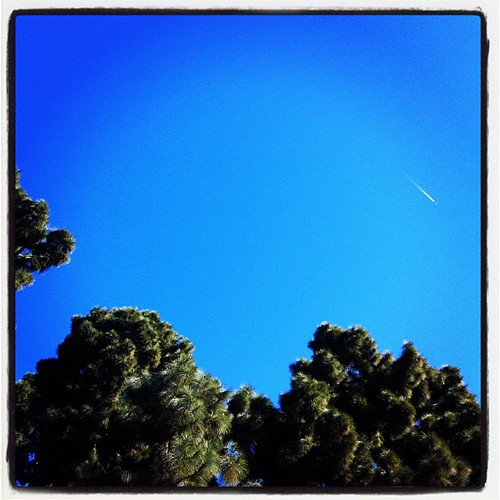 The sky is insanely blue today.