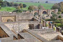Desde arriba te haces una idea de la magnitud de la ciudad Medina Azahara, el capricho del primer califa de Al-Andalus - 8176186287 7691eb451a m - Medina Azahara, el capricho del primer califa de Al-Andalus