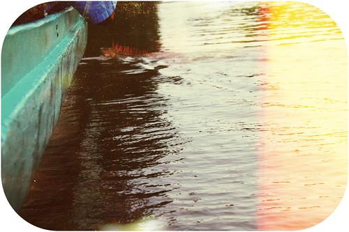 Iguana Swimming Up To Boat