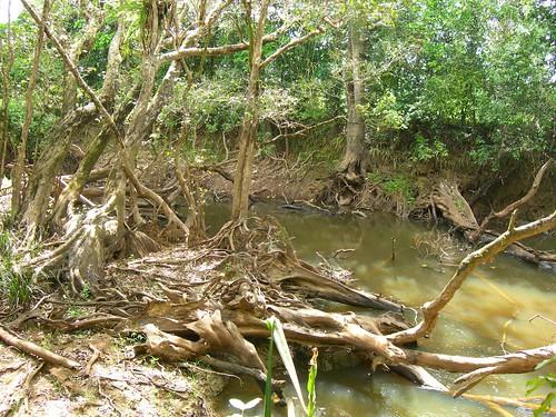 VIAGGI: AUSTRALIA 2012 - 509