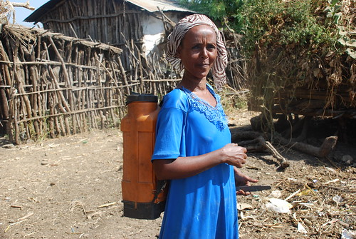 Women in Metema community use knapsack sprayer