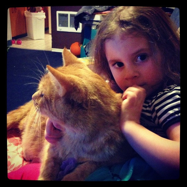 These two are going to be dangerous with each other, I can tell. He already puts up with her so much, purring the whole time and she gives him an internal monologue. #weneedarealitytvshow #ilovemyfamily #catstagram #mydaughter