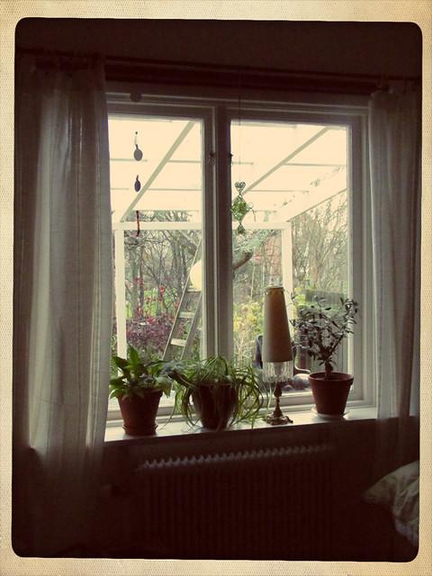 Rena fönster