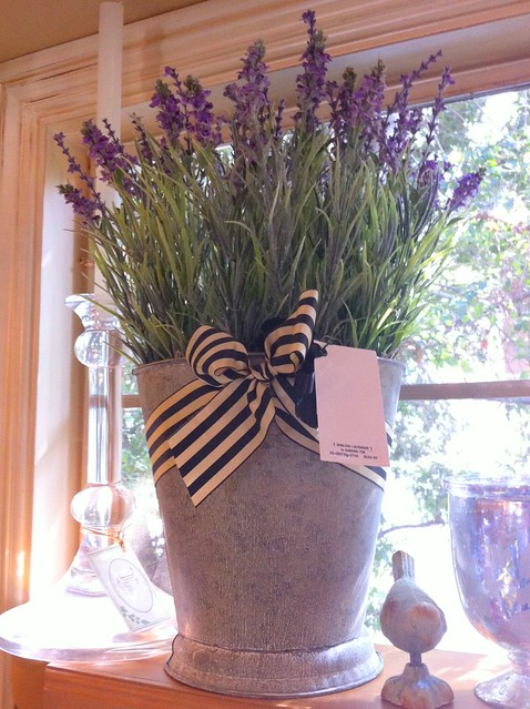 thyme vase
