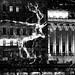 Fête des Lumières 2012 - Cerf sur palais de Justice