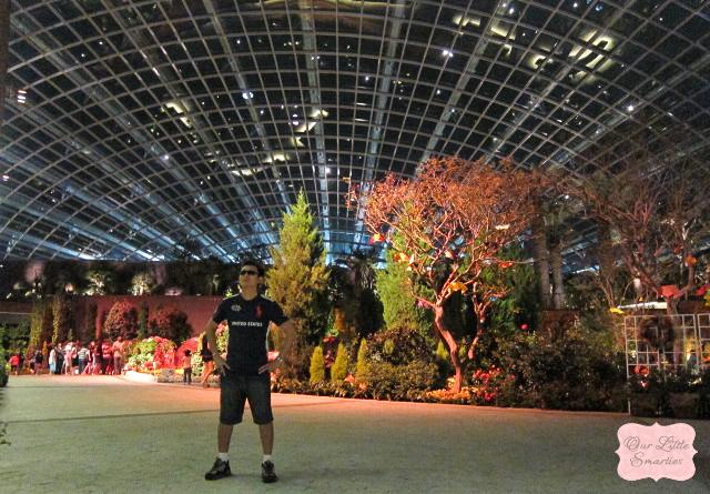 V at Flower Dome