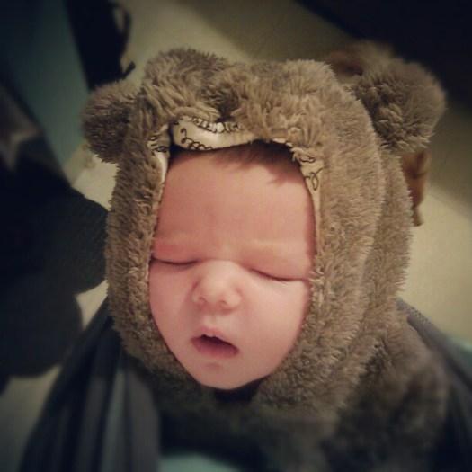 Baby Bear Wearing