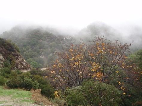Santa Anita Canyon hiking trip