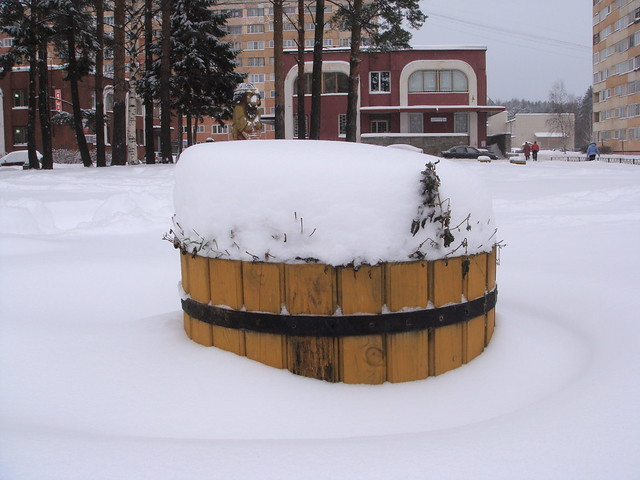 Клумба снега // Flowerbed with snow