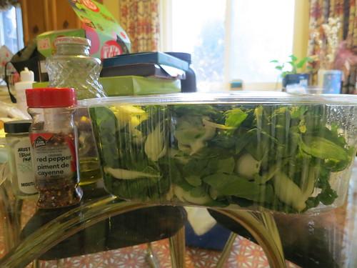 Bok choy salad with avocado