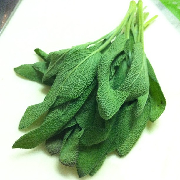 Fresh sage -smells amazing!!!