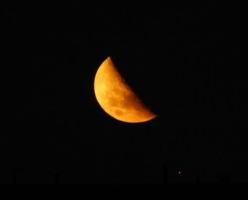 Luna by melisawatanabe
