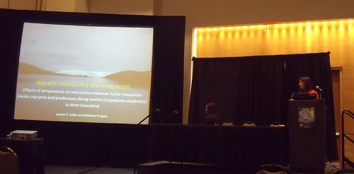 speaking at the Entomology meeting