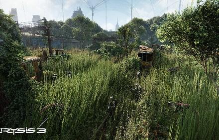 Crysis 3 - Field - 12-6-12 b
