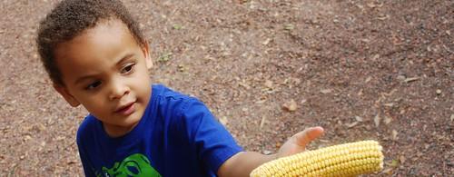 julius corn (1280x498)