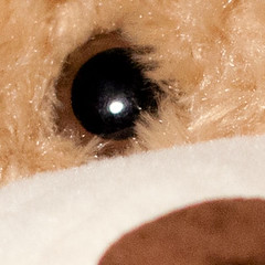 EyeFocus_eye