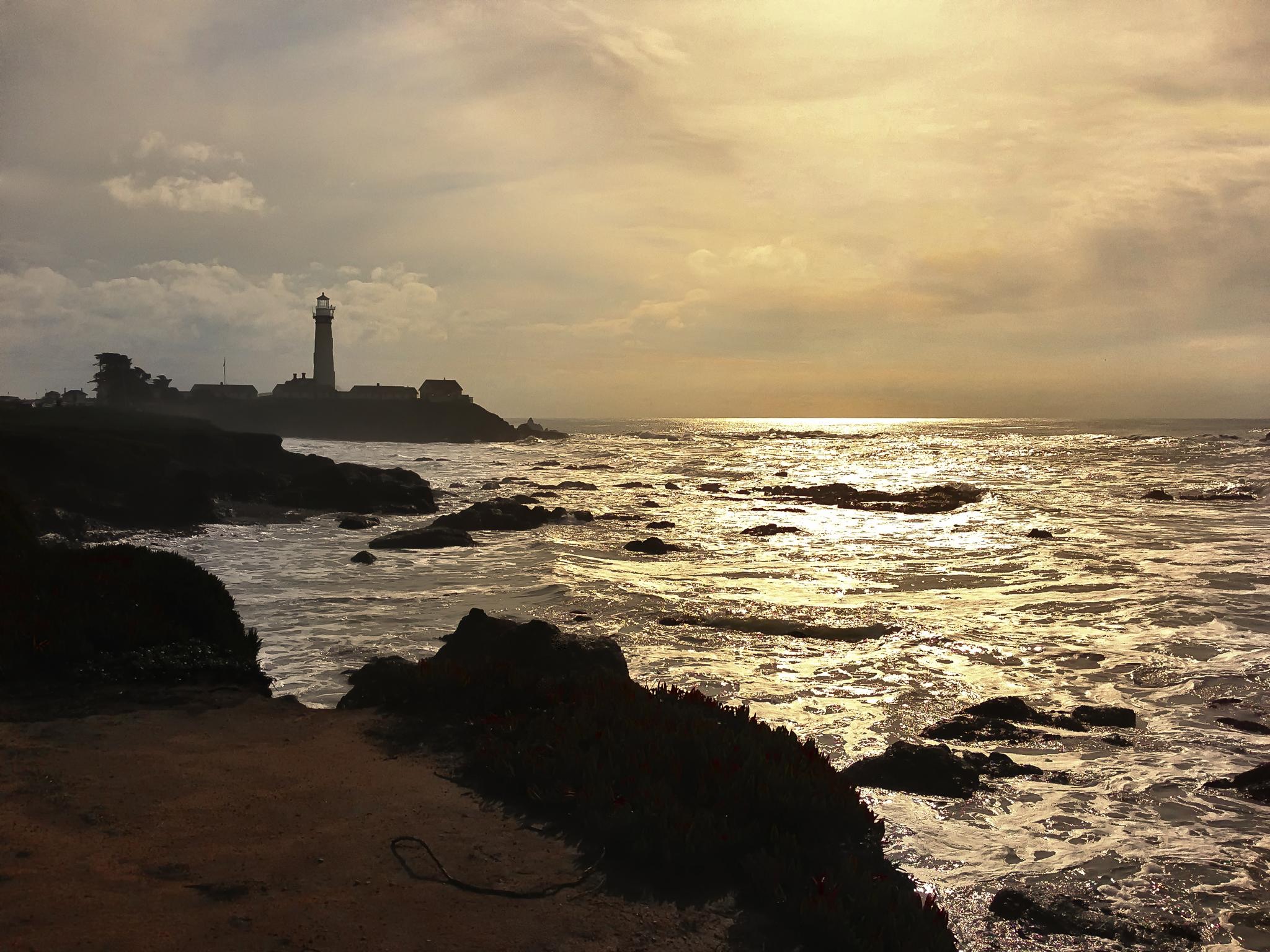 Coastal Light - Pigeon Point - 2012
