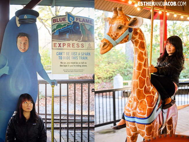 Zoo Atlanta Rides Carousel and Blue Flame Express | Tourists at Home Atlanta Edition